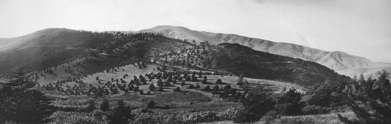 Before:  Photo Around 1910