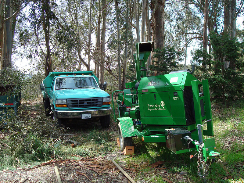 Wood-chippers create mulch from removed trees