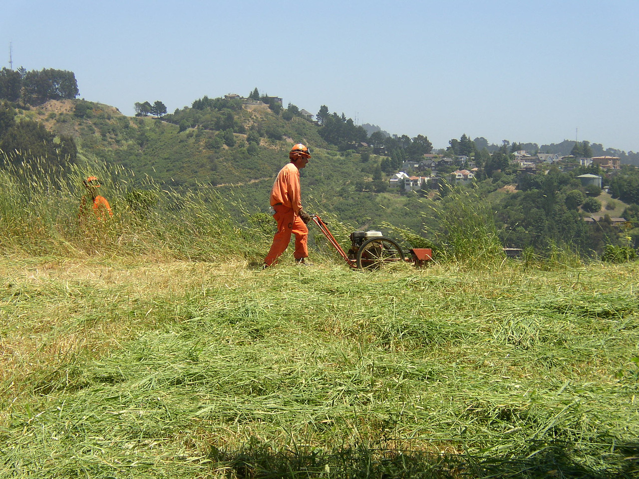 Mowing grass on a fuel break