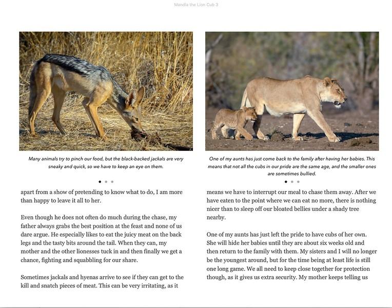 mandla-the-lion-cub-ebook-sample-page 2
