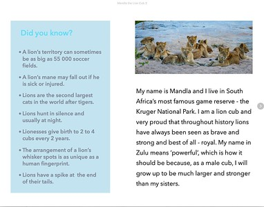 mandla-the-lion-cub-ebook-sample-page1
