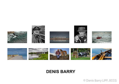 Best Panel, 2016 - Denis Barry LIPF