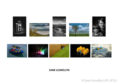 Best Panel, 2016 - 2nd Place - Zane Llewellyn LIPF