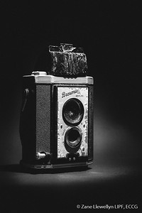 Best Black & White shot, 2016 by Zane Llewellyn LIPF - Joint Winner