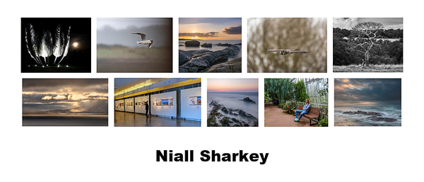 Panel Competition - Second Place - Niall Sharkey
