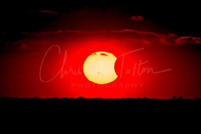 October 23, 2014 Eclipse thru Solar Filter