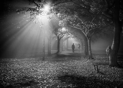 Misty Meadows.