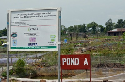 PIND FACILITATES DEMONSTRATION POND PROJECT