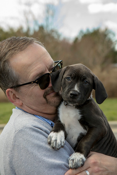 Puppies22