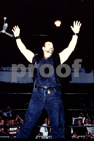 ECW slides