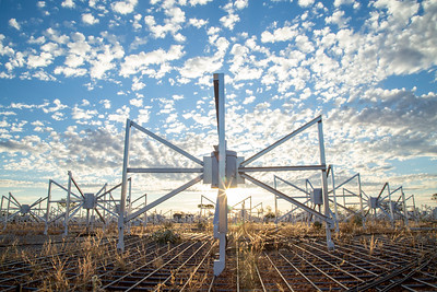 Bowtie antennas of the Engineering Development Array (EDA). Credit: ICRAR/Curtin.