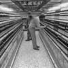 Darmstadt-Class VI store-opening of-(Crocker)-2 February 198