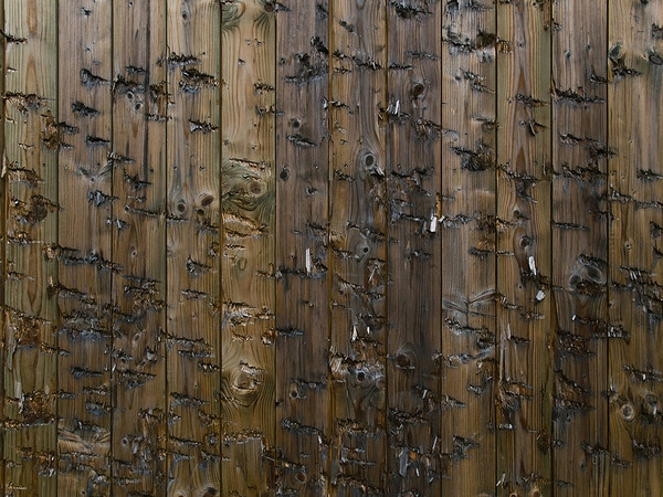 US Rifle Range, Messel am 7. Oktober 2011
