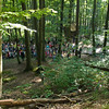 5. Internationaler Waldkunstpfad »Freiheit und Wildnis« vom 2.8.-26.9.2010 im Wald am Böllenfalltor, Darmstadt; Kinderoper Hänsel und Gretel