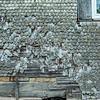 Dirlammen im Vogelsberg (Foto: Christoph Rau)