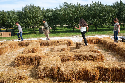 Kids play on the Hay maze.