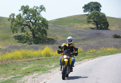 John Button takes a ride one one of his motorcycles near his Paso Robles home. John and Debbie Button sold their million dollar home in Danville to buy one half the price on a bigger lot in Paso Robles, where they now own a chocolate shop. Their grandkids live three blocks away and are a big part of their lives. John who worked in high tech, is semi-retired, and likes to ride his motorcycles on the backroads of Paso Robles and up and down the coast. Debbie really likes working at the chocolate shop which they purchased after moving to Paso Robles.