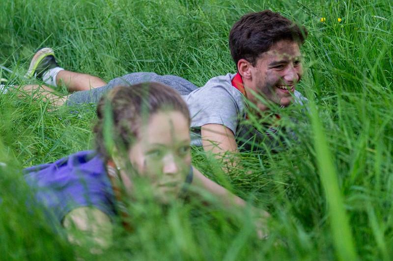 Caché-e-s dans l'herbe