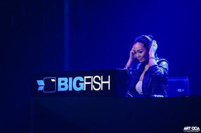 Bigfish Innovation White 2013 (1)