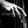 Jazz Man Hands... (in motion)
