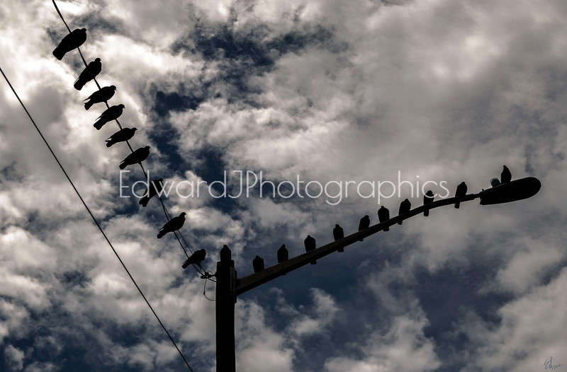 Angles on a wire...