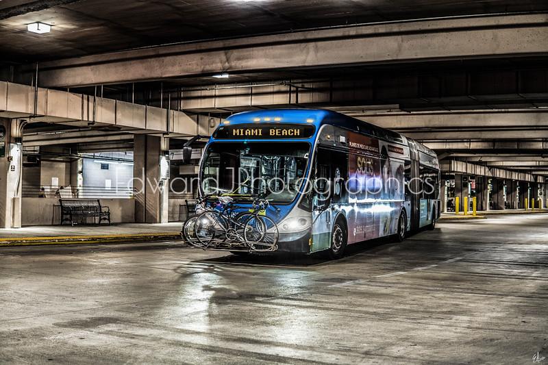 Miami Bus Station Night Life...