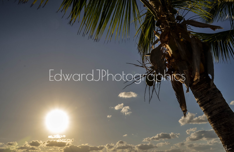Hollywood Beach Sunrise. . .