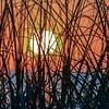 Morning Meditation Sunrise Stillness