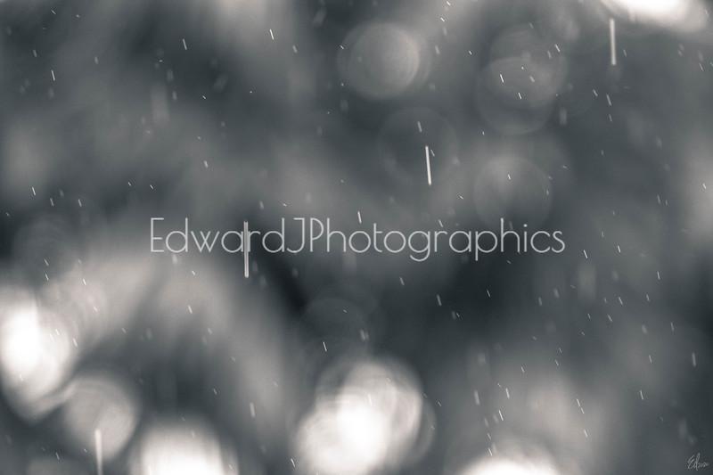 Falling Rain...