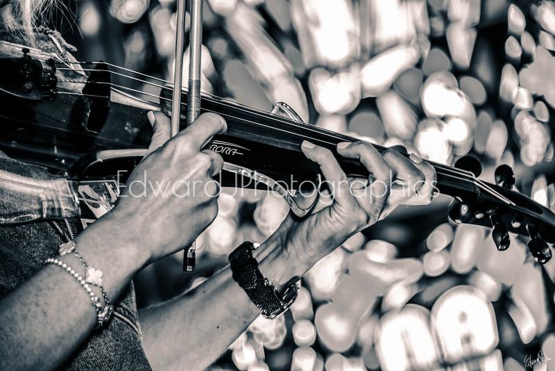 Violinist...   (Kat V)