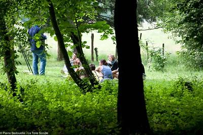 Sous les arbres de la région lyonnaise