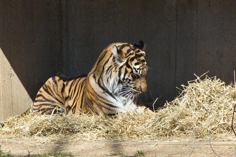 Zoo de Washington