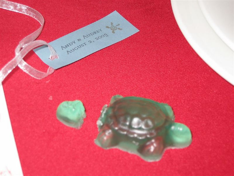 Headless turtle party favor @ Reception