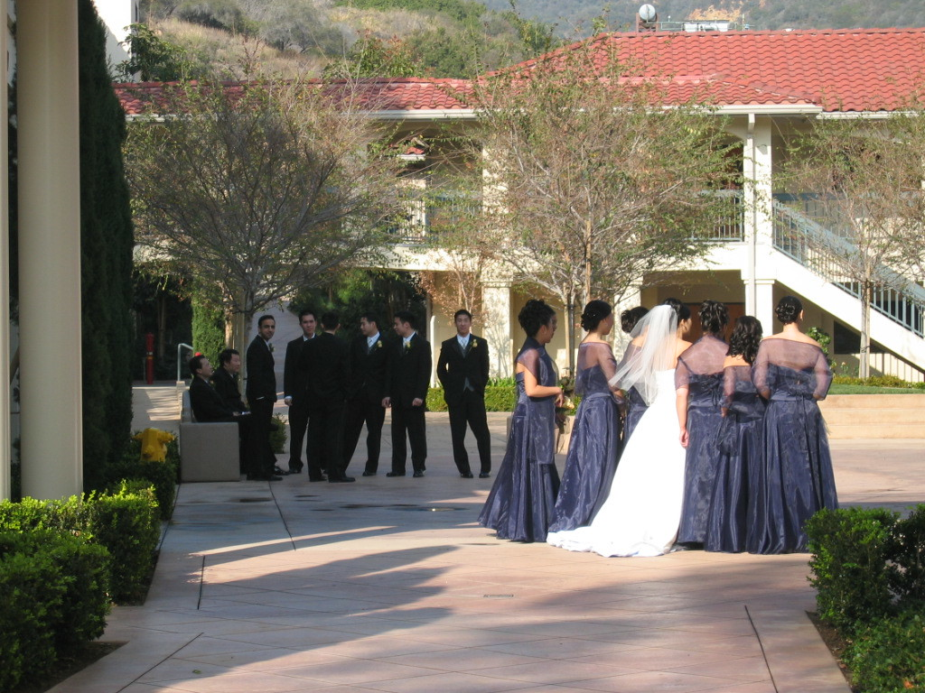 Wedding parties outside