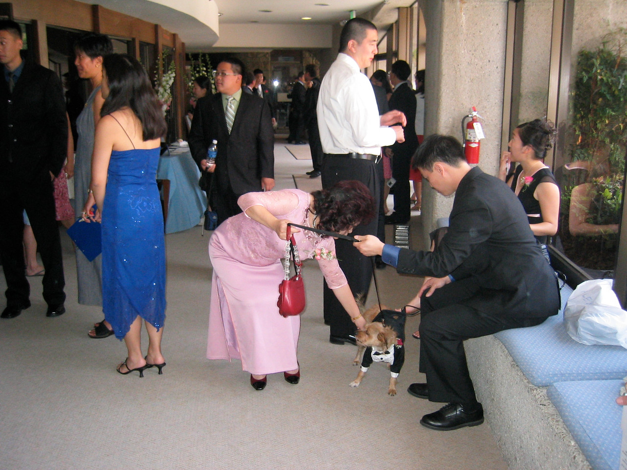 Ceremony - Mr  & Mrs  Hu and Benji