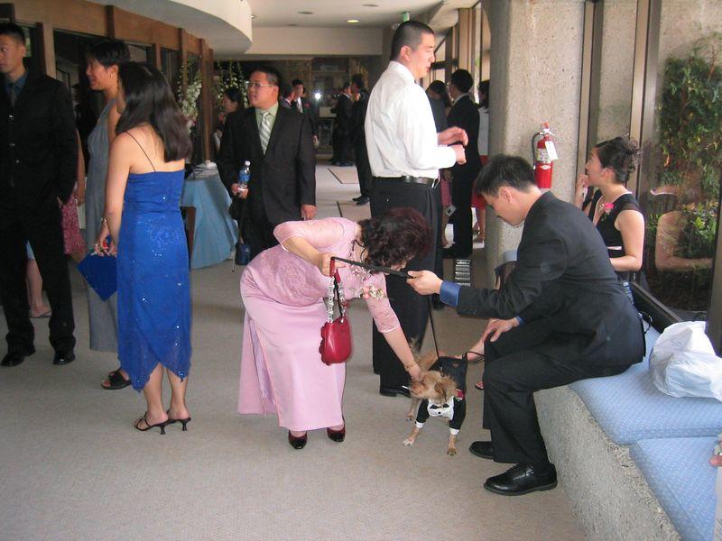 Ceremony - Mr  & Mrs  Hu and Benji