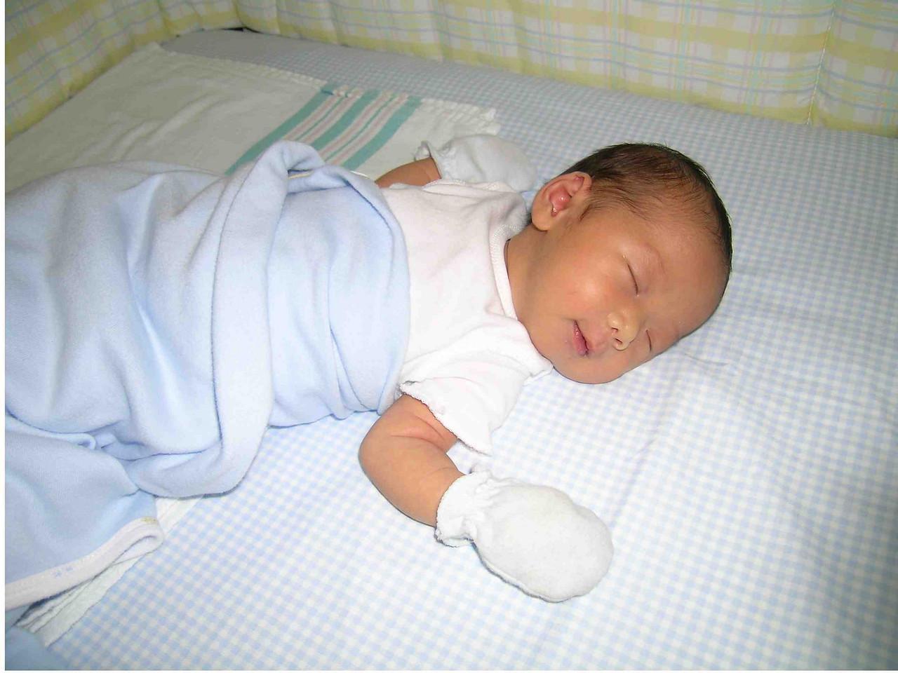 Sleeping Ally