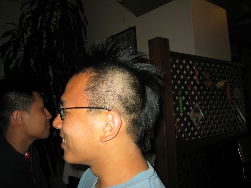 Powei's Mohawk Mania - Profile shot, Friday 5 30 2003