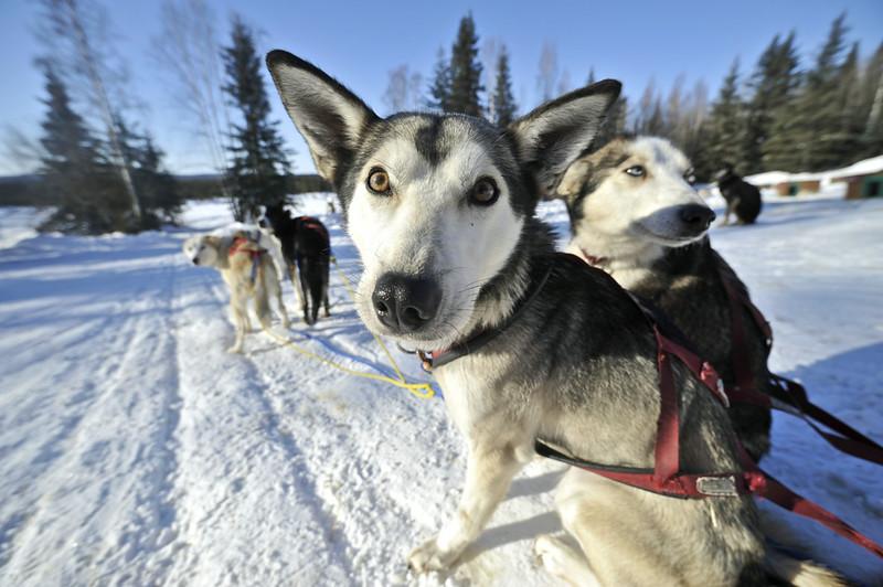 © State of Alaska/Matt Hage
