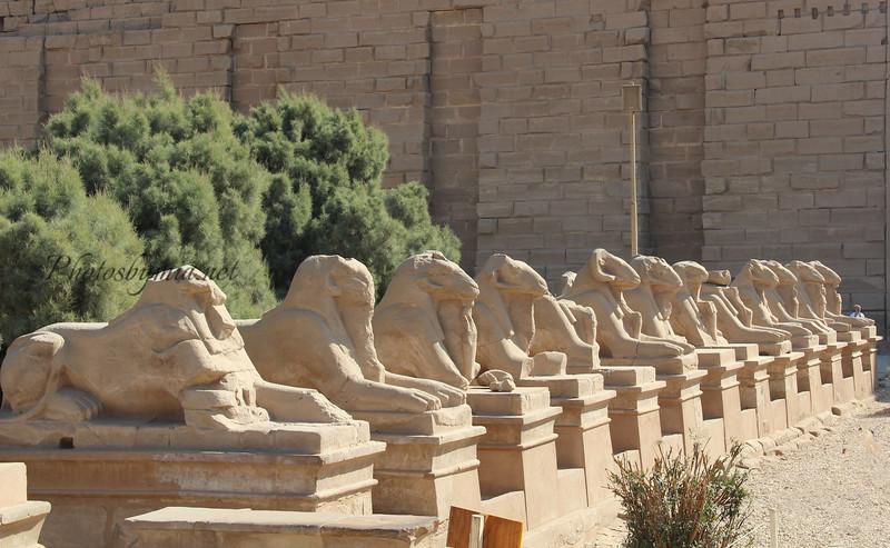 Israel and Egypt 616 (2)-Edit