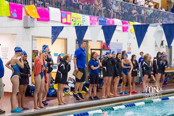 2015 Girls Swim and Dive