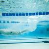 EIU/SLU Swim Meet