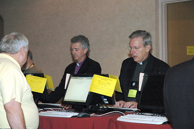 At breaks and between plenary sessions voting members check their e-mail.
