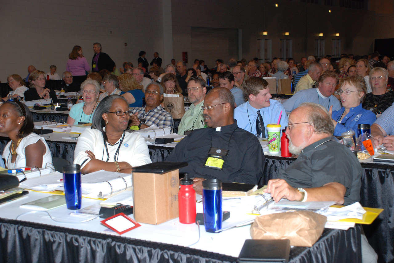 Voting members having a discussion during Plenary 9.