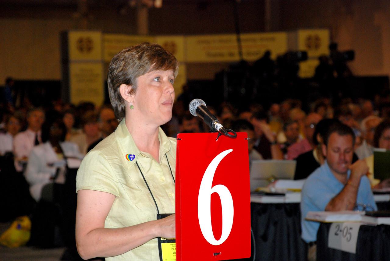 Voting Member speaking against a CWA amendment.
