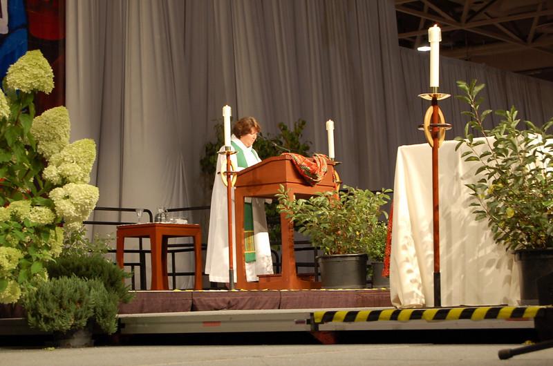 The Rev. Chrysanne Timm preaching.