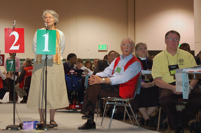 Diane Yeager, Metropolitan Synod of Washington D.C. Synod, speaks to an amendment.
