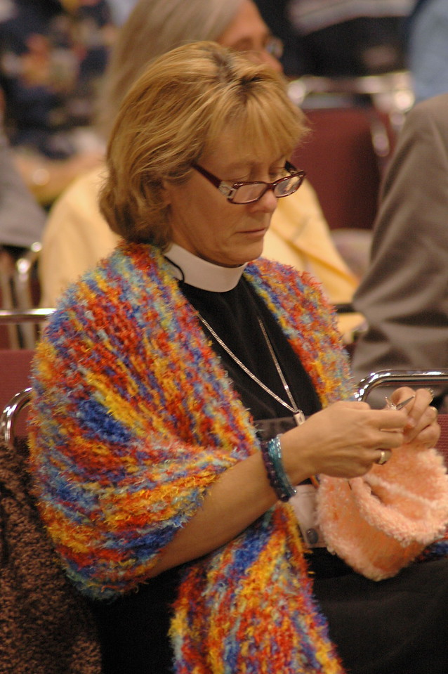 The question is: Did you knit that all during plenary?
