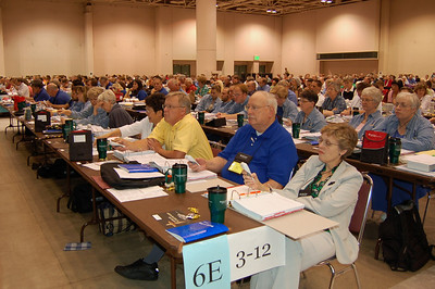 Delegates from the Northeastern Ohio Synod cast their vote for the full communion agreement with the Methodists.