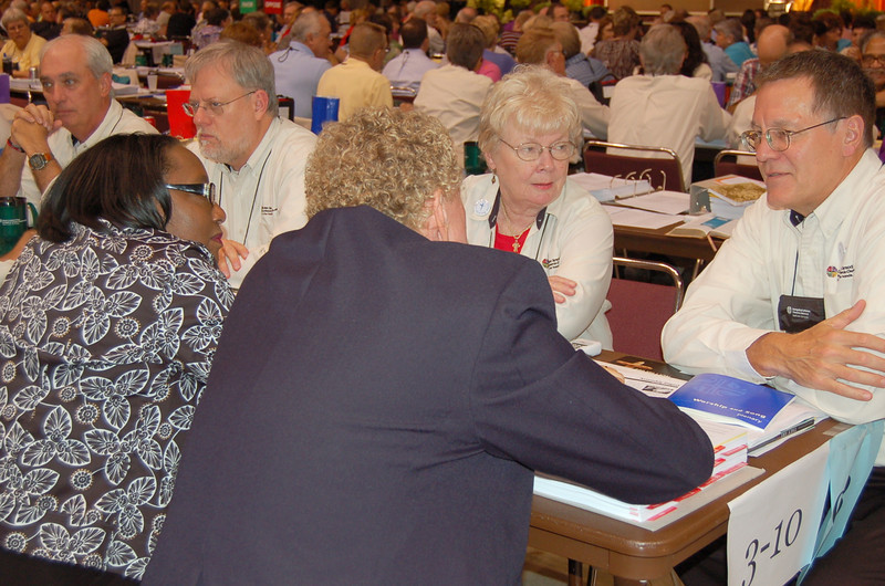 Voting members at plenary session seven.